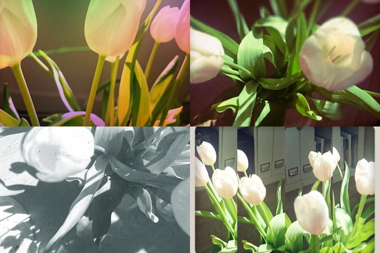 foto aplikacje android
