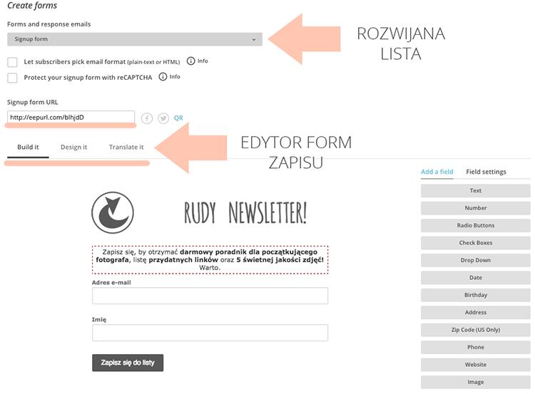 jak zrobić newsletter na blog
