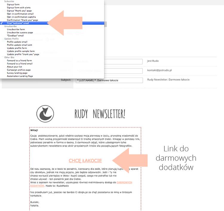 darmowy newsletter mailchimp