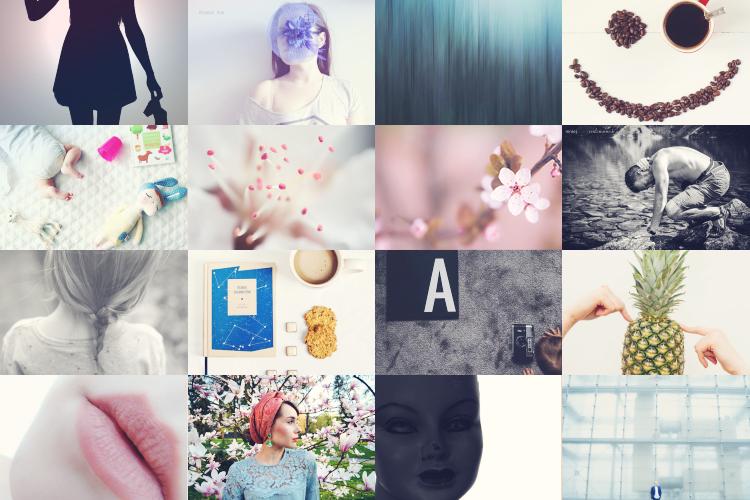 wyzwanie fotograficzne na blogu jest rudo