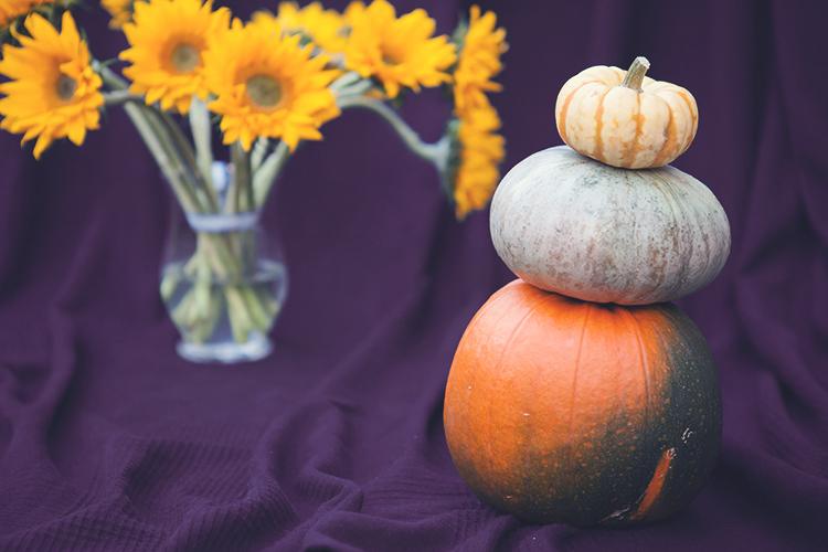 jakie zdjęcia robić jesienią
