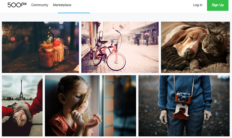 portfolio-fotograficzne-online-1